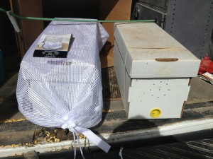 A great way to allow airflow but safely travel with a nuc, or package bees.